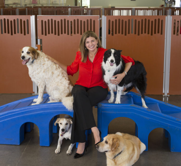 Christina Russell President of Camp Bow Wow