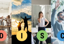 DISC overview personality styles