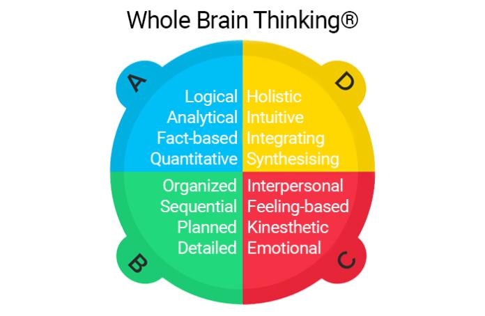 Whole Brain Thinking®